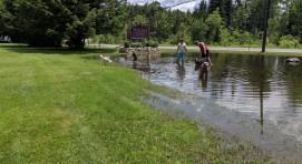 Enjoying our temporary pond!